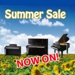 summer sale picture web